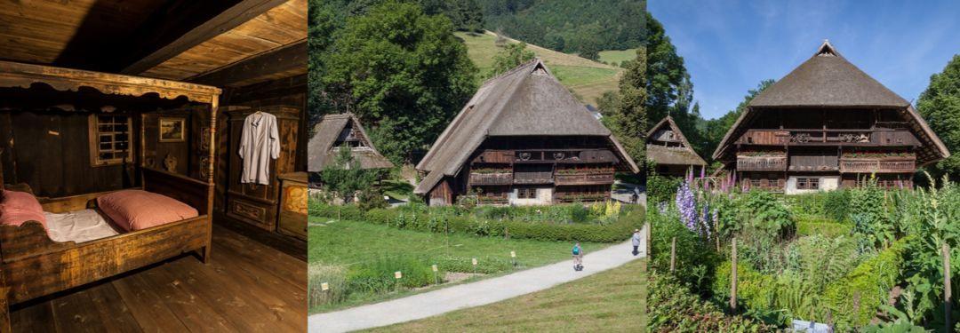 『MiClub | 妙手空空训练营』2019年6月 | 德国南部黑森林四天三夜 · 露营游船徒步 · 吉他歌声篝火